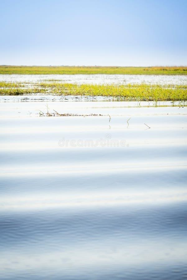 Download Rivière de Chobe photo stock. Image du calme, horizontal - 77154512