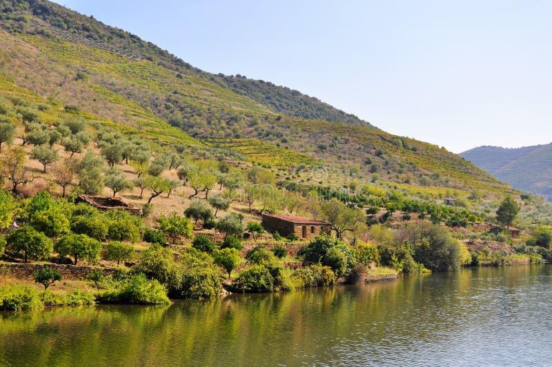 Rivière de Douro et une vieille maison de campagne photo stock