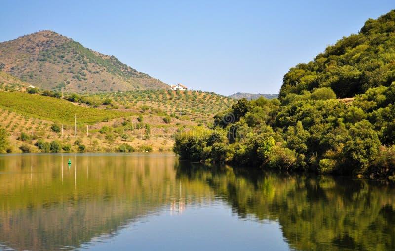 Rivière de Douro - les montagnes et le paysage photographie stock libre de droits