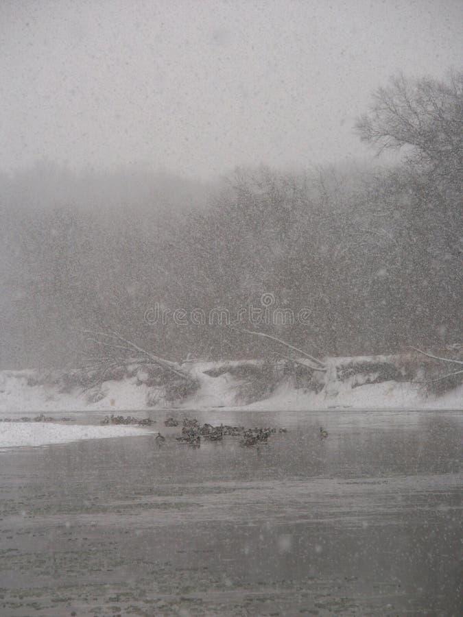 Rivière de Kishwaukee de tempête de neige image libre de droits