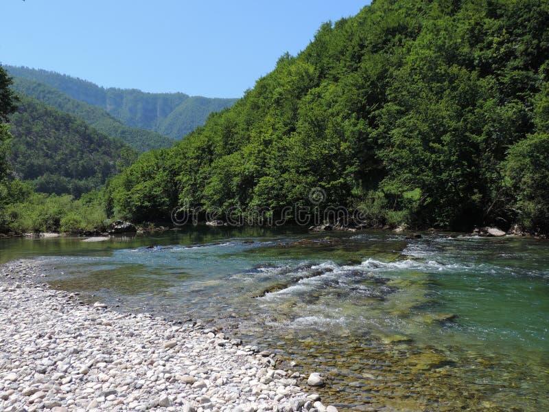 Rivière de Kupa photographie stock libre de droits
