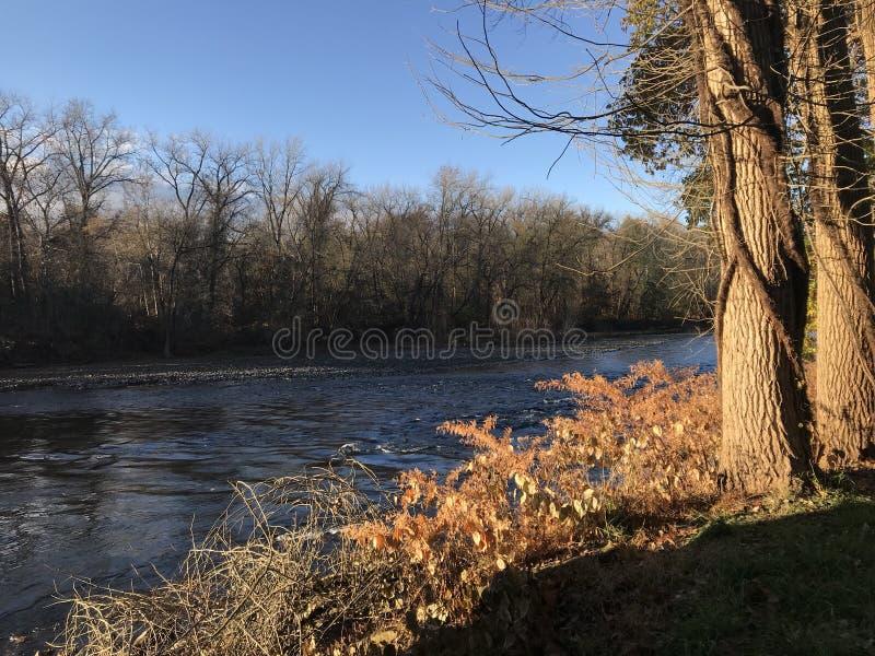 Rivière de Lehigh près d'Easton Pennsylvania dans le défunt automne photos libres de droits