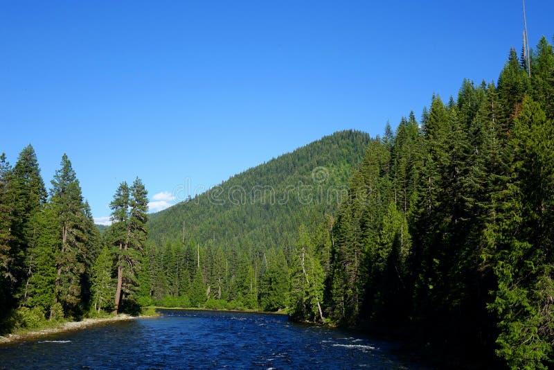 Rivière de Lochsa - Idaho photos libres de droits