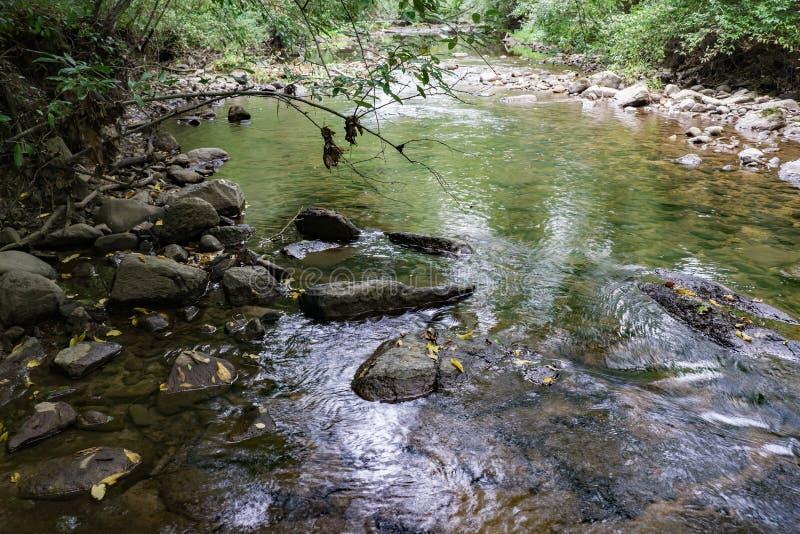 Rivière de marchand ambulant, le comté d'Amherst, la Virginie, Etats-Unis - 3 photographie stock