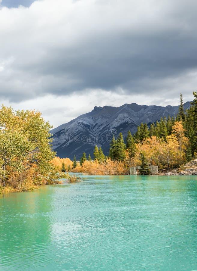 Rivière de montagne avec des couleurs de chute photo libre de droits