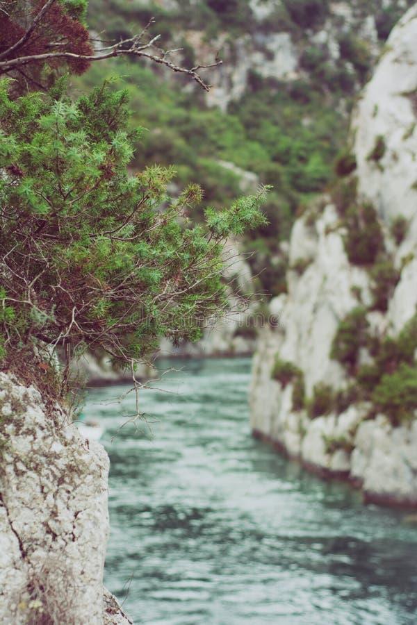 rivière de montagne avec de l'eau bleu images stock