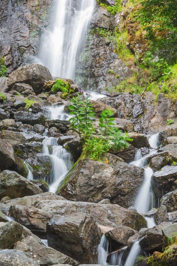 Rivière de montagne avec les roches et la cascade image libre de droits