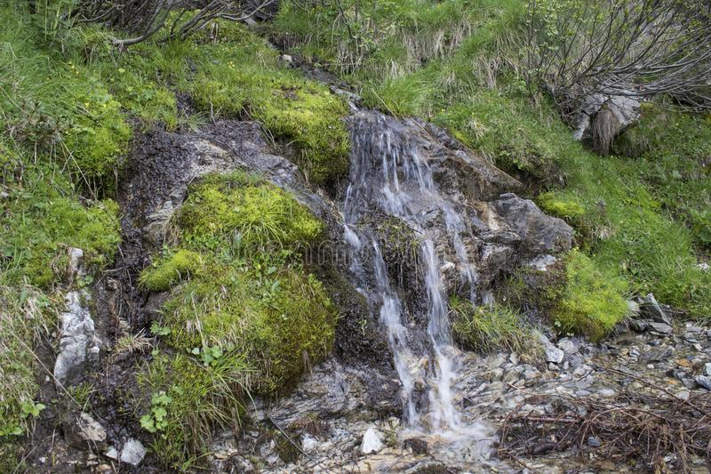 Rivière de montagne avec une petite cascade avec de la mousse et l'herbe photo libre de droits