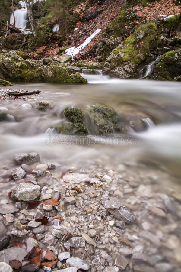 Rivière de montagne dans la lumière chaude de soirée images libres de droits