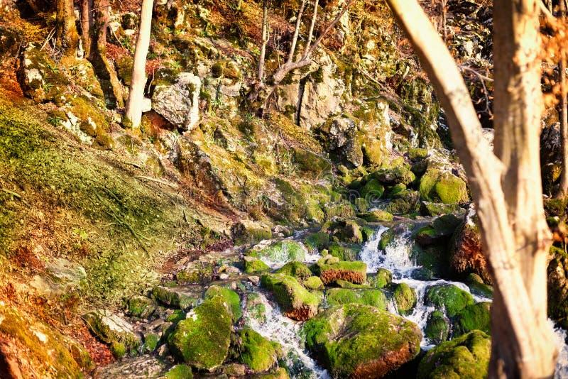 Rivière de montagne faisant la cascade photos stock