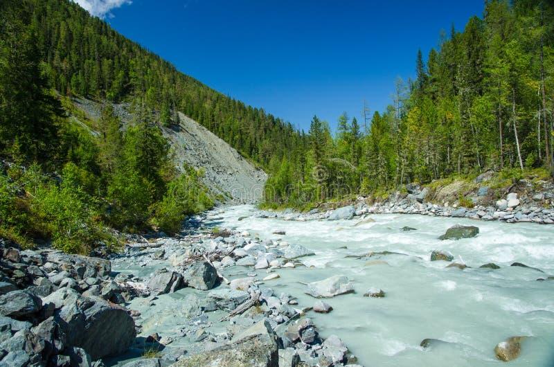 Rivière de montagne, Russie, République d'Altai image libre de droits