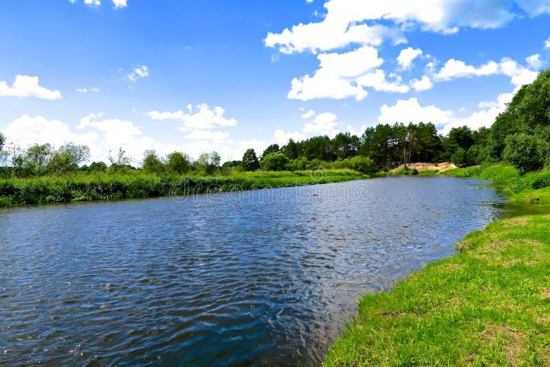 Rivière de Neman et prés verts au Belarus image libre de droits