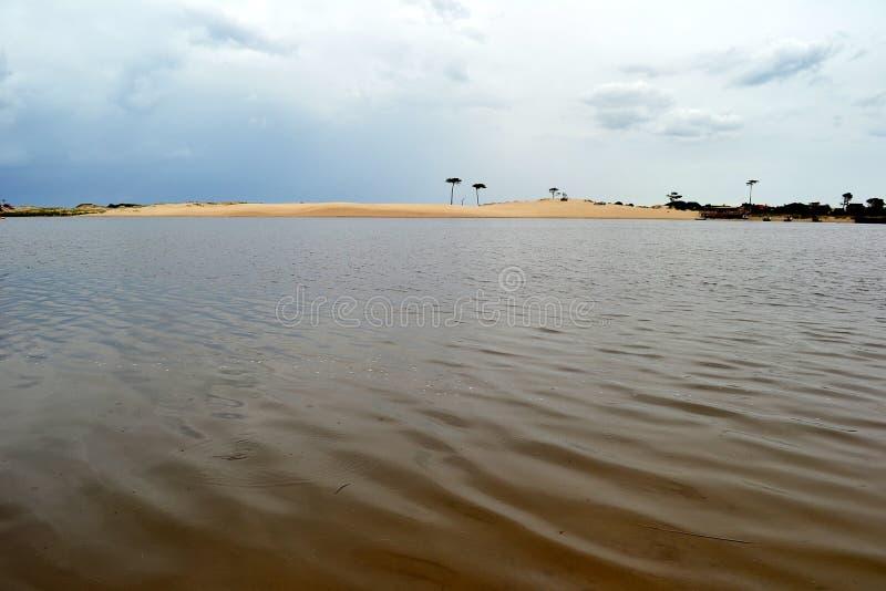 Rivière de Pando et dunes isolées photos stock