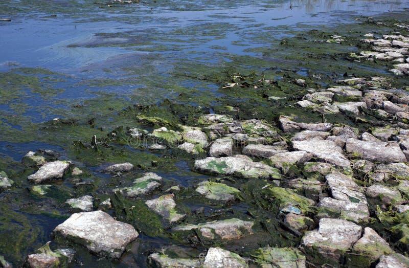 Rivière de pollution photos stock