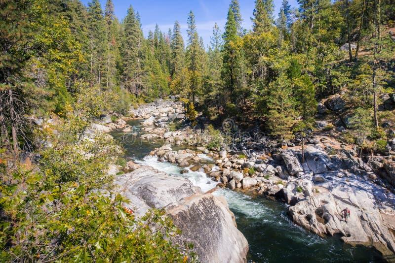 Rivière de Stanislau fonctionnant par une forêt de pin et de sapin photos stock