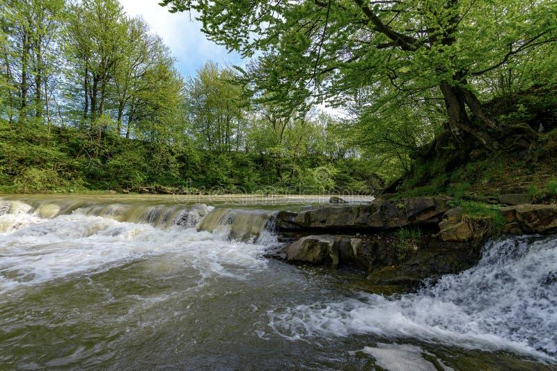 Rivière de Stryj images stock