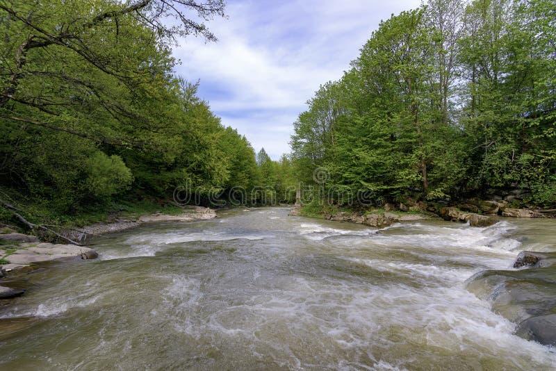 Rivière de Stryj images libres de droits