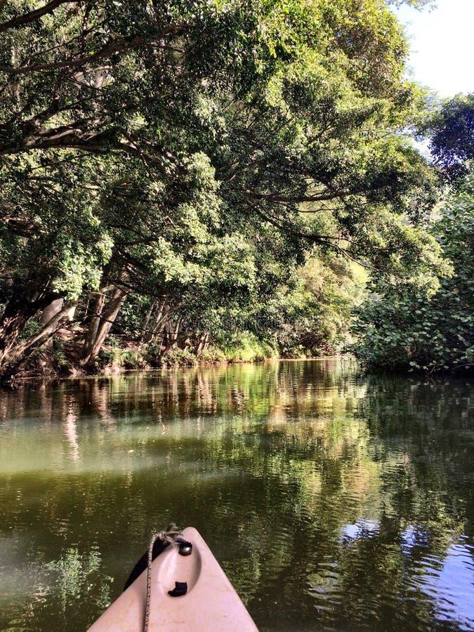 Rivière de Wailua sur l'île de Kaui image stock