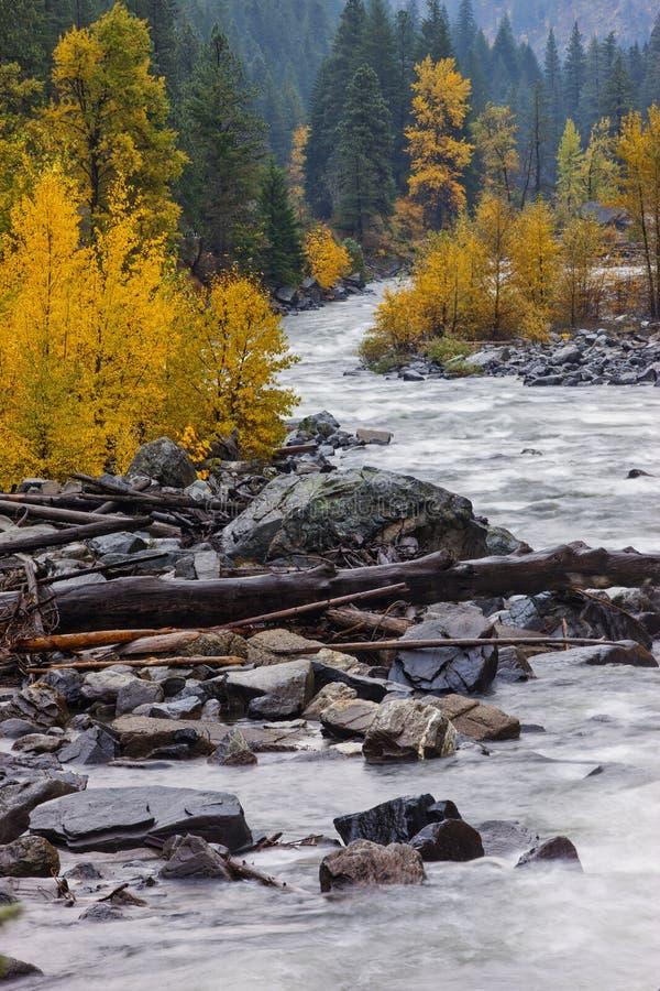 Rivière de Wenatchee en automne photos libres de droits