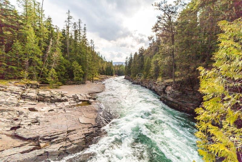 Rivière de Whitewater en parc national de glacier image libre de droits