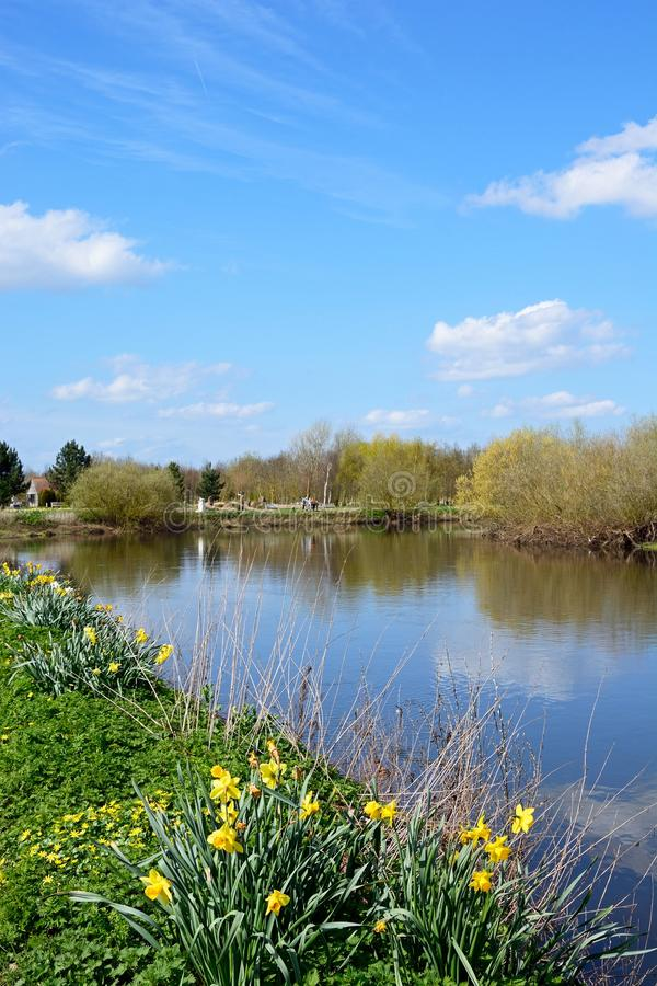 Rivière docile pendant le printemps, Alrewas photographie stock libre de droits