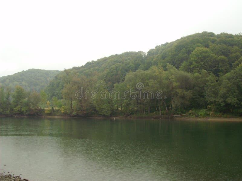 Rivière Drina photographie stock
