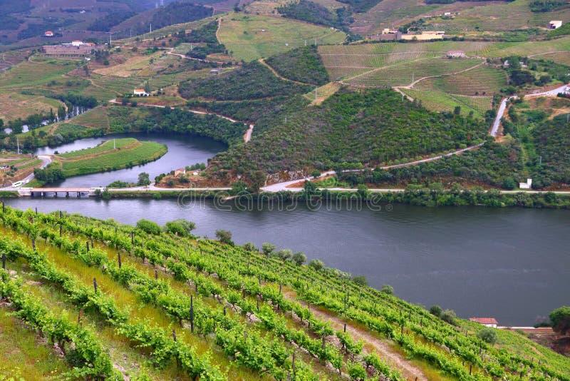 Rivière du Portugal Douro image libre de droits