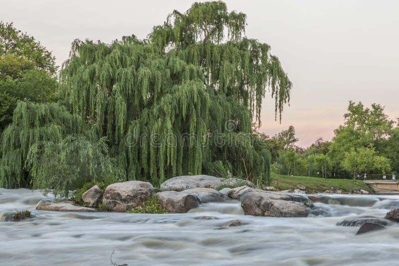 Rivière en Afrique du Sud photo libre de droits