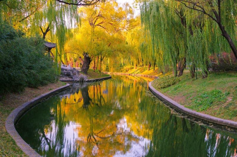 Rivière en automne photo libre de droits