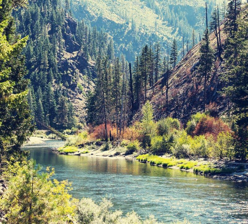 Rivière en montagnes images libres de droits