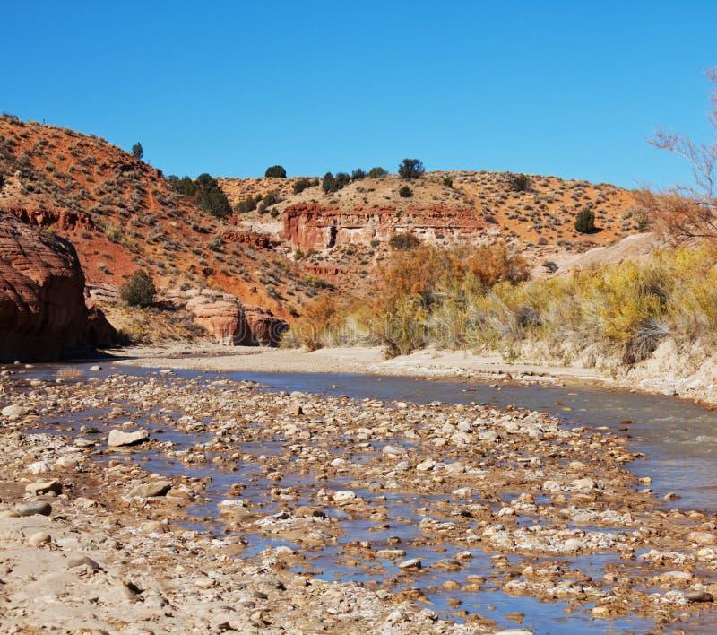 Rivière en montagnes photographie stock libre de droits