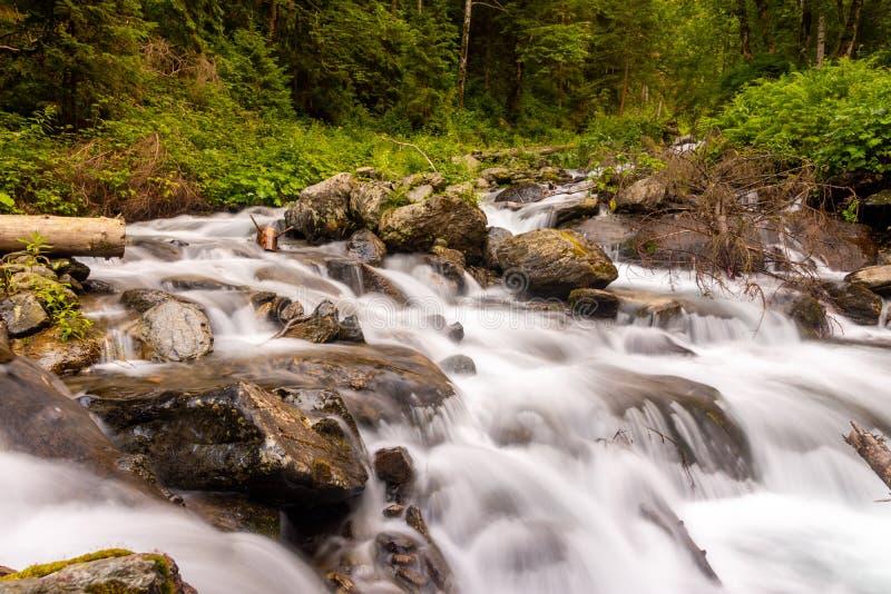 Rivière en montagnes de Fagaras faisant sa voie par la belles forêt et roches de gree image libre de droits