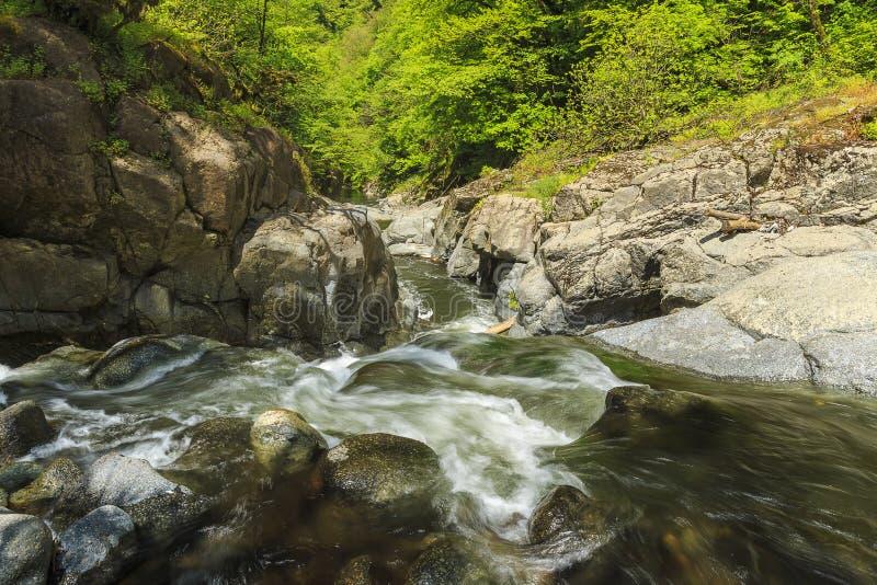 Rivière en parc national de Hirkan dans Lankaran Azerbaïdjan image libre de droits