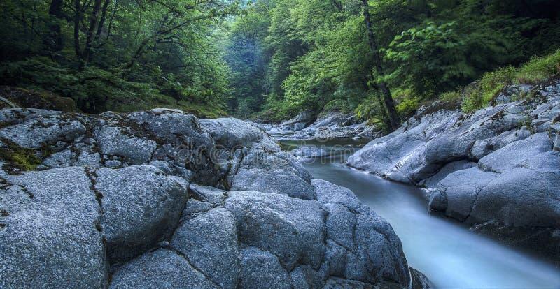 Rivière en parc national de Hirkan dans Lankaran Azerbaïdjan images libres de droits