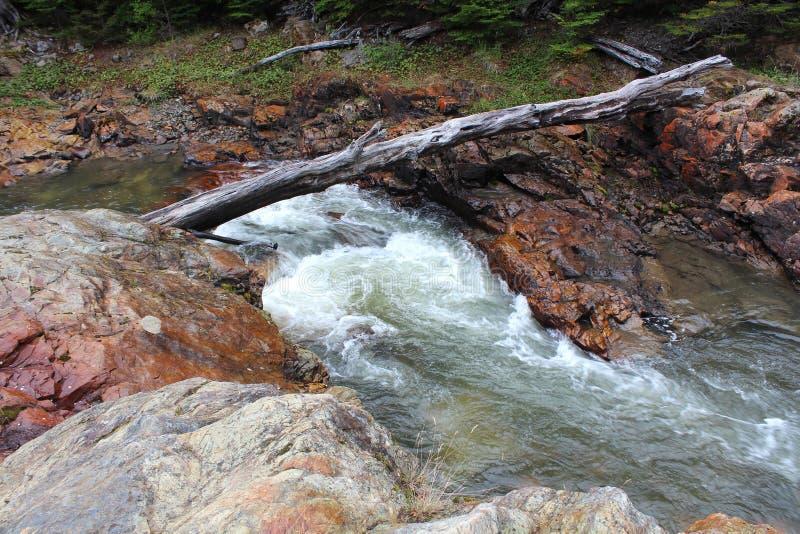 Rivière en parc national Tierra del Fuego photo stock