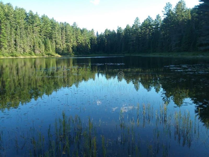 Rivière en verre avec Reed s en parc d'algonquin photos stock