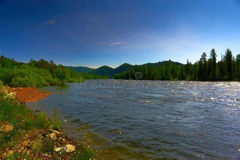 Rivière et bois de montagne photos libres de droits