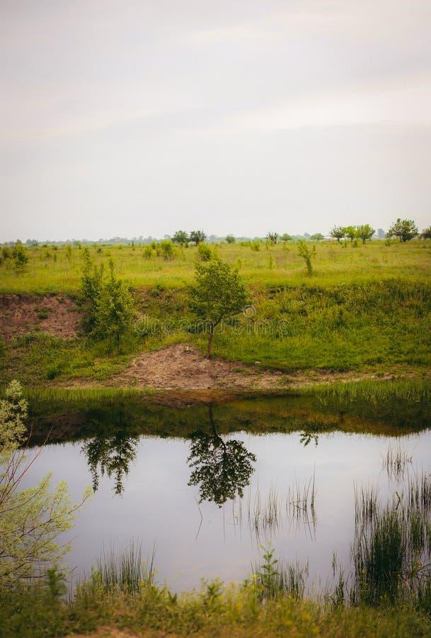 Rivière et champ images stock
