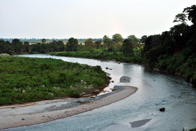 Rivière et jungle images libres de droits