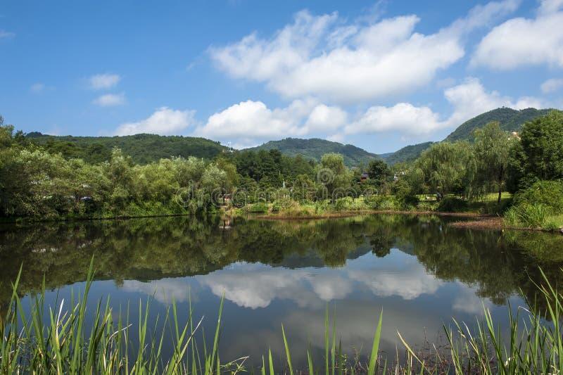 Rivière et la montagne images libres de droits