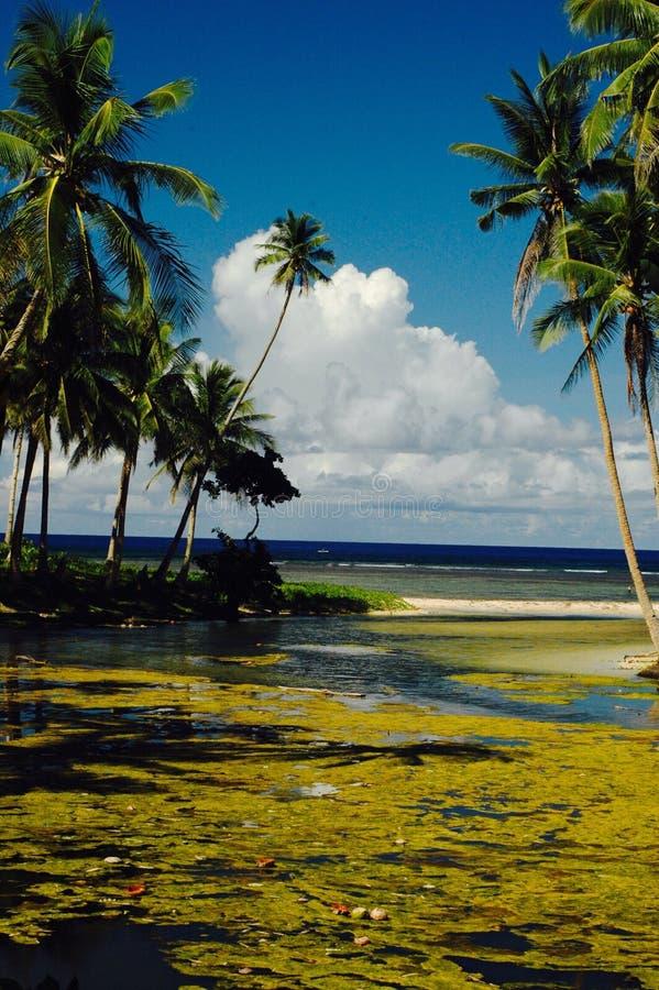 Rivière et mer photos libres de droits
