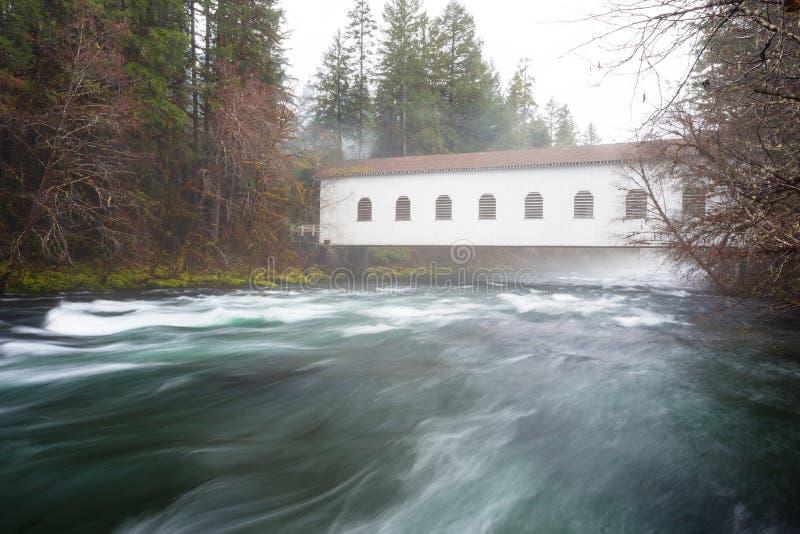 Rivière historique de McKenzie de pont de Belknap image stock