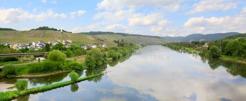 Rivière idyllique de la Moselle au printemps, vignobles de flanc de coteau images libres de droits