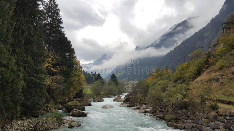 Rivière isolée dans les bois images stock