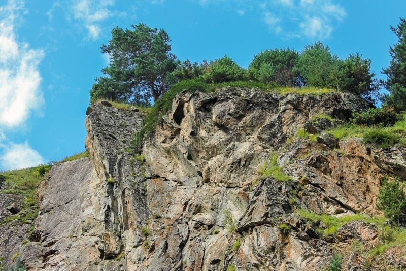 Rivière orageuse de montagne parmi la forêt dense photographie stock