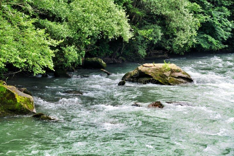 Rivière orageuse Malaya Laba au pied des montagnes de Caucase photo stock