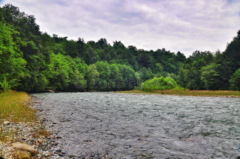Rivière orageuse Malaya Laba au pied des montagnes de Caucase images libres de droits