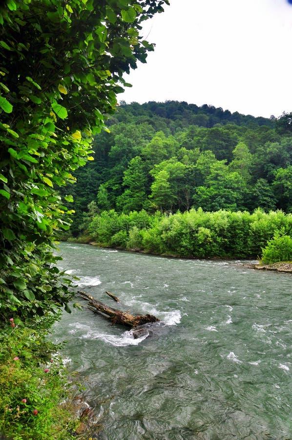 Rivière orageuse Malaya Laba au pied des montagnes de Caucase image stock