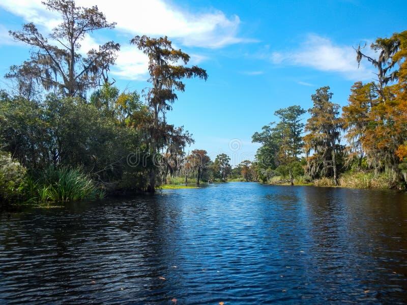 Rivière par le bayou luxuriant, cieux bleus photo libre de droits