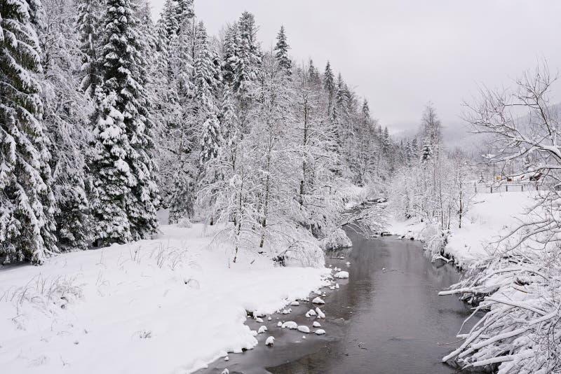 Rivière partiellement congelée fonctionnant par une forêt neigeuse en hiver photographie stock libre de droits